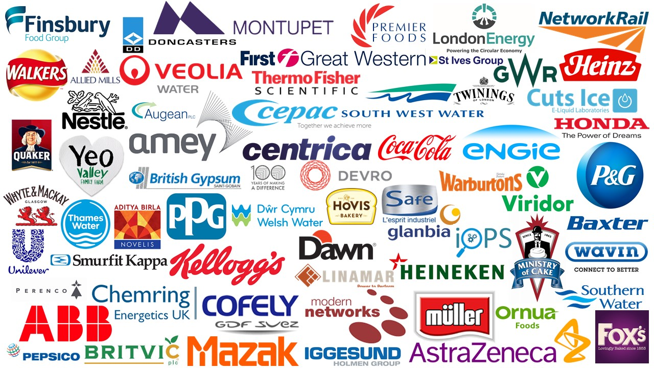 EMS Cognito Customer logos 2018